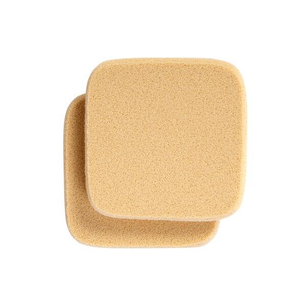 Foundation Sponges